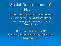 Social Determinants 2011 - Early Childhood Mental Health Network