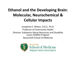 Ethanol and the Developing Brain: Molecular, Neurochemical