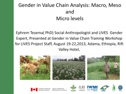 Gender in Value chainsmacro,meso and micro - LIVES