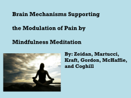 Brain Mechanisms Supporting the Modulation of Pain by