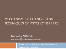 Mechanism of Changes and Techniques of Psychotherapies