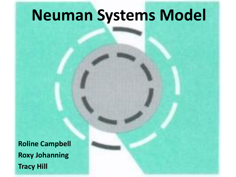 betty neumans systems model