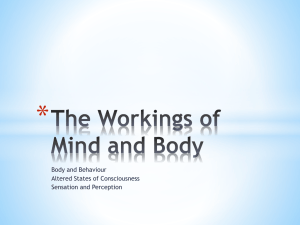 Unit 3 The Workings of Mind and Body