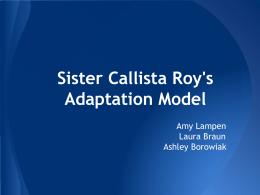 sister callista roy theory