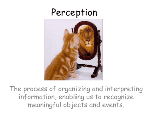 Perception - AP Psychology Community