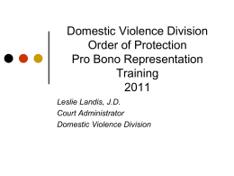 Circuit Court of Cook County Domestic Violence