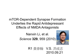 mTOR-Dependent Synapse Formation Underlies the Rapid