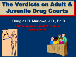 The Verdict on Drug Courts and Other Problem