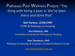 The Peer Wellness Program