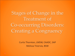 Stages of Change in the Treatment of Co-occurring Disorders - MI-PTE