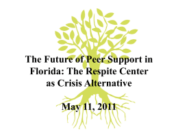 The Future of Peer Support in Florida