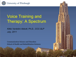A Comprehensive Model of Voice Therapy