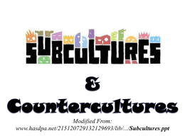 Subcultures & Countercultures