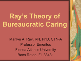 The Theory of Bureaucratic Caring