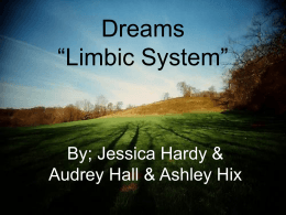 "Dreams ""Limbic System"""