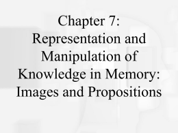 Chapter 2 : Cognitive Neuroscience