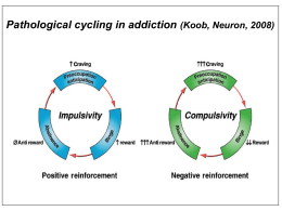 Pathological cycling in addiction (Koob, Neuron