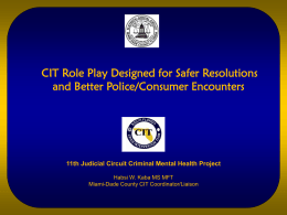 cit role play designed for safer resolutions and better police
