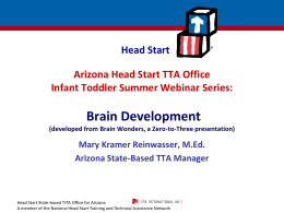 Brain Development - Arizona Head Start Association