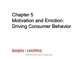 Driving Consumer Behavior