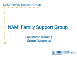 NAMI FSG Group Dynamics