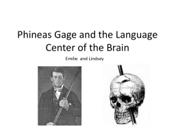 TOK phineas gage lindsey emilie