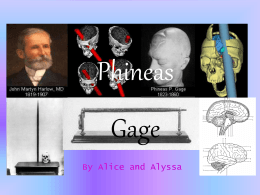 Phineas Gage (Lobes)