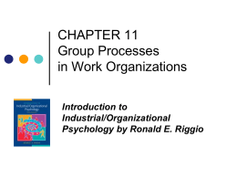 Riggio Group Process in Work Organizations