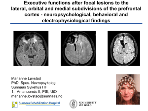 Executive functions after focal lesions to the lateral, orbital and