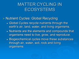 Ch. 3: Biogeochemical Cycles