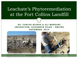 Leachate`s Phytoremediation on Ft Collins` Landfill
