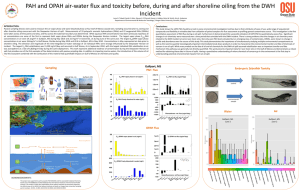 2014 SETAC poster world GoM PAH flux