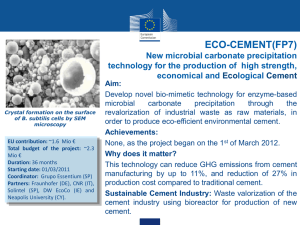 ECO-CEMENT(FP7) New microbial carbonate precipitation