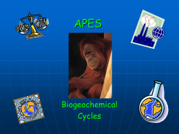 Biogechemical Cycles