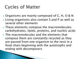 Cycles in Nature PowerPoint