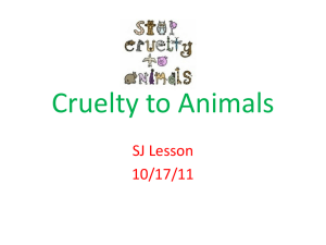 Cruelty to Animals