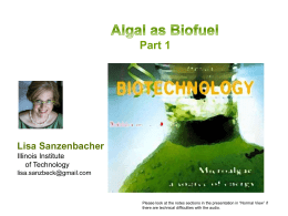 Food for Thought: Algae as Fuel