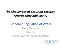 Cathy Mannion Water Slides -SEAI October 2012