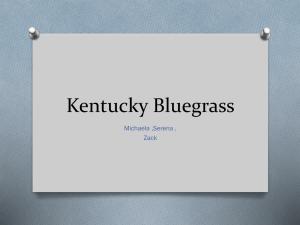Bluegrass Region - Campbell County Schools