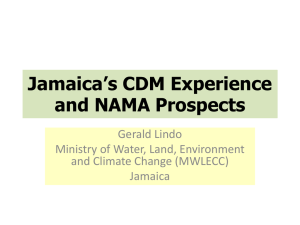Jamaica*s CDM Experience and NAMA Prospects