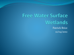 Free water surface wetlands by Patrick Brice