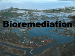 Chapter 9: Bioremediation - Kennesaw State University College of