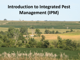 Integrated Pest Management in the 21st Century