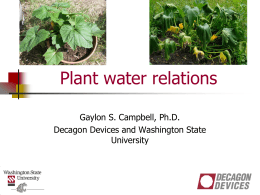 Section 4- Plant Water Relations
