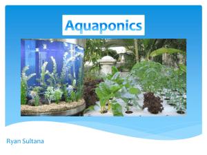 the aquaponics business plan PDF