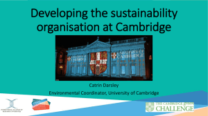 Developing the sustainability organisation at