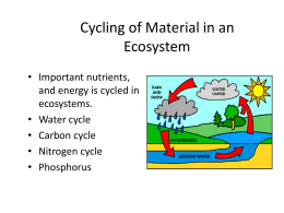 Cycling of Material in an Ecosystem