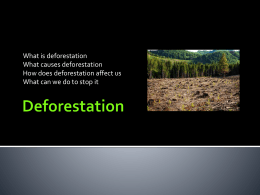 Deforestation - Sharing the Planet