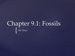 Chapter 9.1: Fossils - Miami Arts Charter School
