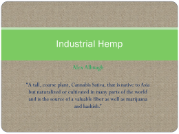 Albuagh Industrial Hemp PP- revised
